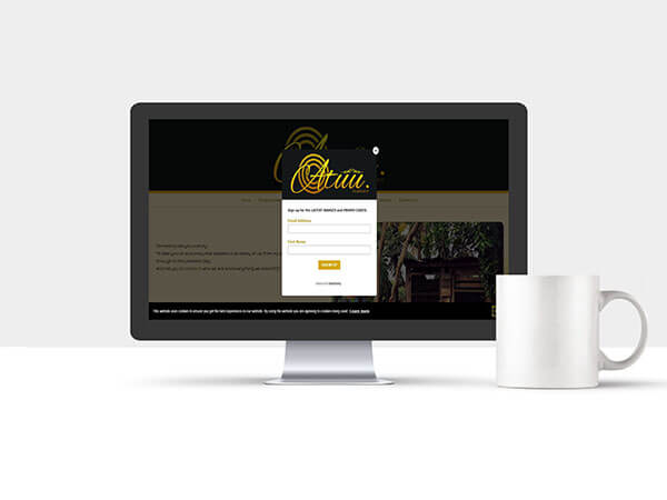 Website Services - Atuu Embrace Clothing